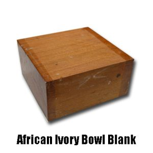 African Ivory Bowl Blank