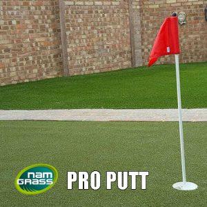 Namgrass Pro Putt