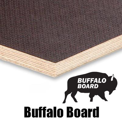 buffalo cat