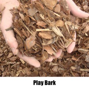 play bark