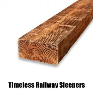 timeless sleeper new web